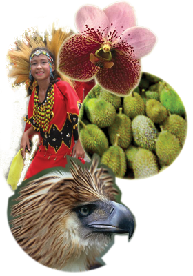 Daba-daba collage created by me.  Orchid pic by George Allikas, Eagle pic taken from the National Geographic website.  Durian and Parade pics are mine.